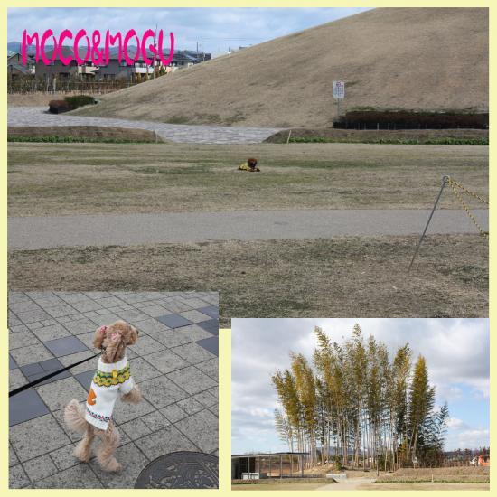 4_convert_20100210213455.jpg