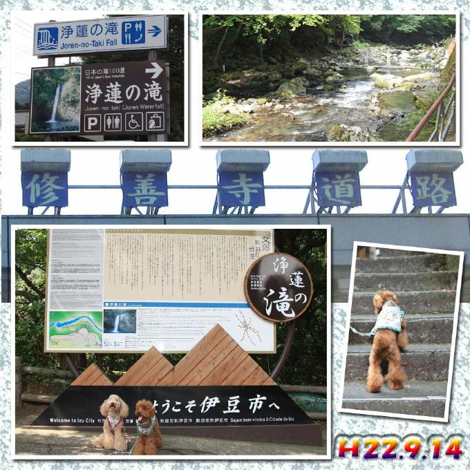 5_20101001102844.jpg