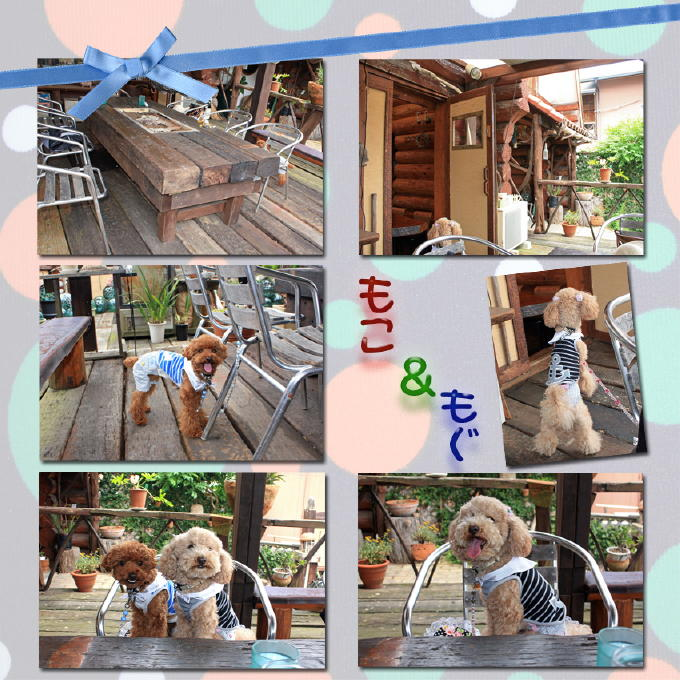6_20100613205259s.jpg
