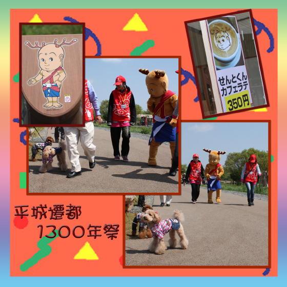 7_20100502175224.jpg