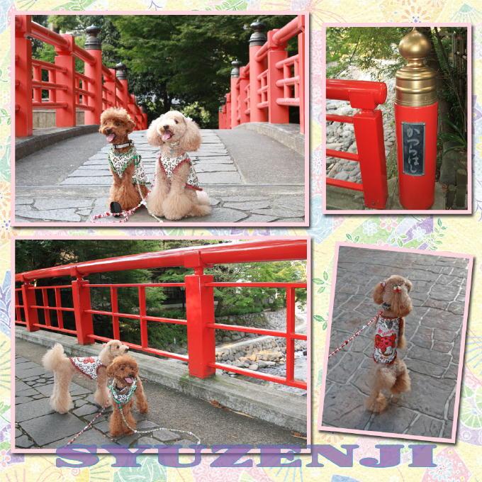 7_20101002202700.jpg