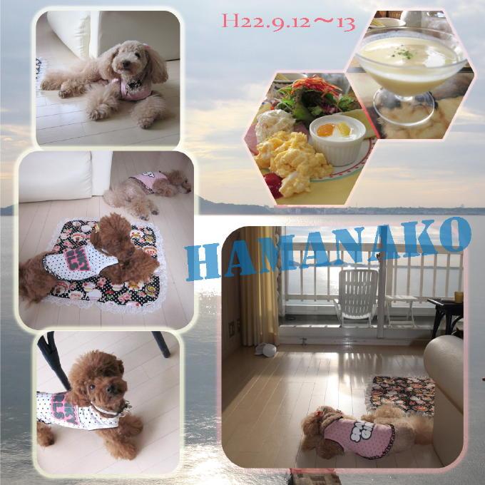 9_20100924202722.jpg
