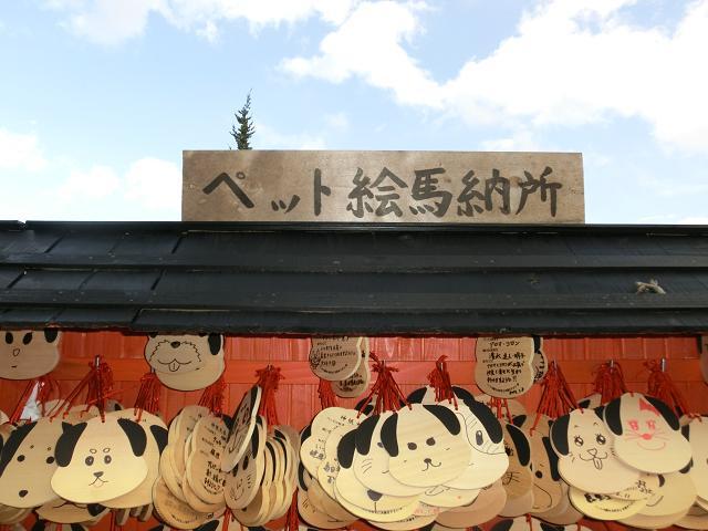 伊豆高原2012.03.24 (85)