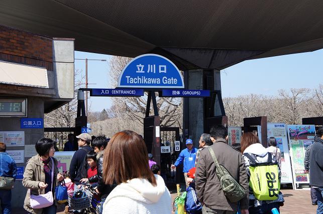 昭和記念公園お花見オフ会 (31)