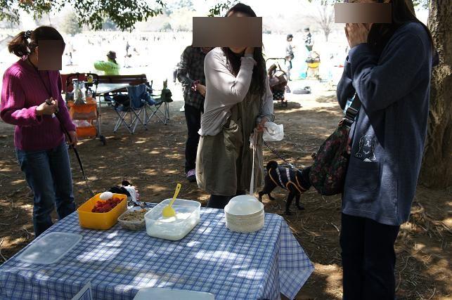 昭和記念公園お花見オフ会 (56)