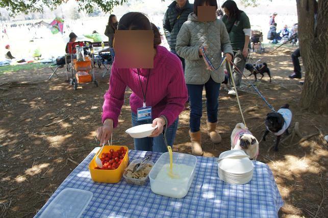 昭和記念公園お花見オフ会 (72)