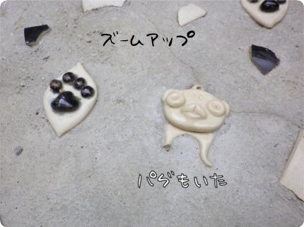 2011.5.1.6ちゅらら