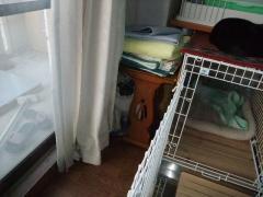 DSCF0165_20091129141806.jpg