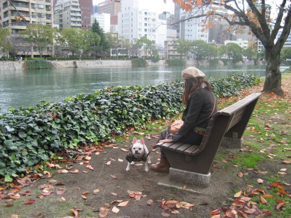 平和公園 落ち葉