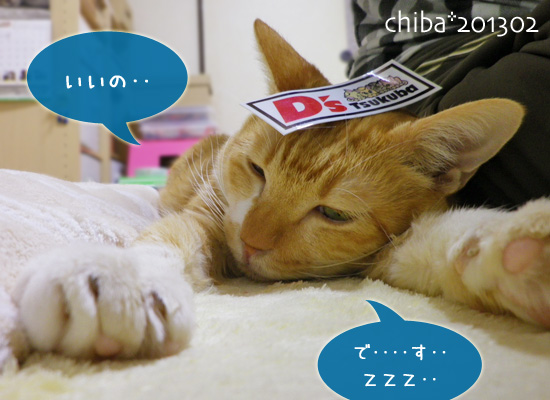 chiba13-02-107.jpg