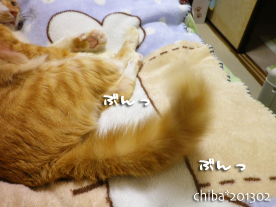chiba13-02-38.jpg