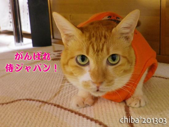 chiba13-03-11.jpg