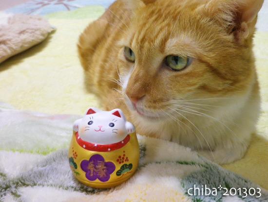 chiba13-03-15x.jpg