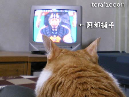 tora09-11-89.jpg