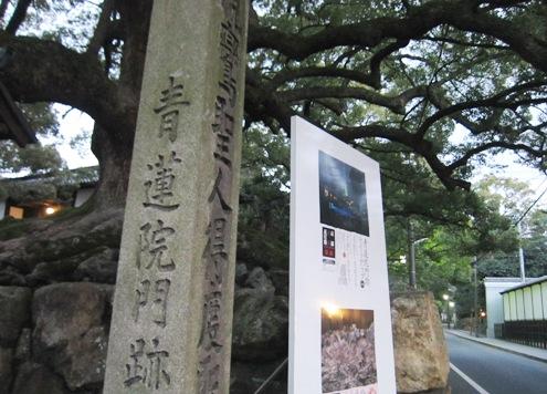 1)青蓮院