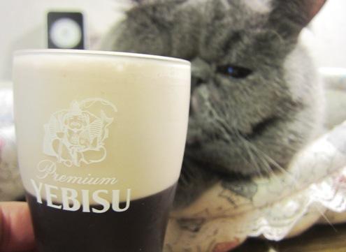 5)乾杯ですよ
