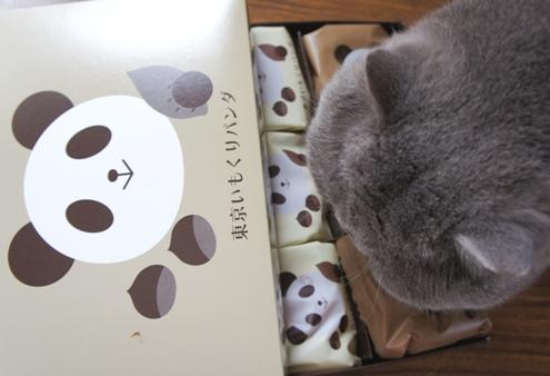 16)ち~なんちゃんからの贈り物