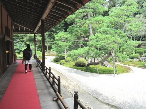 15)曼殊院のお庭