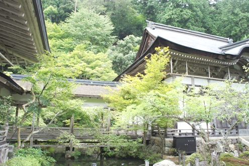 13)常照皇寺お庭-2