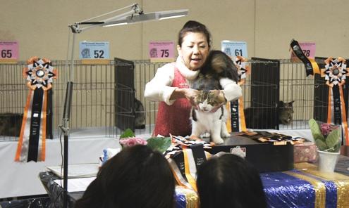 1.5)上田ジャッジファイナル表彰
