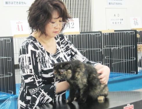 5.1)ビヨンセちゃん審査