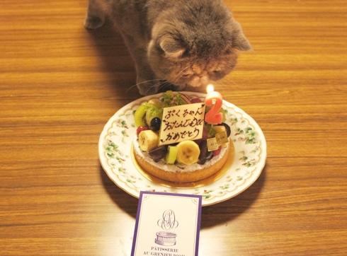 16)ぷくとケーキ