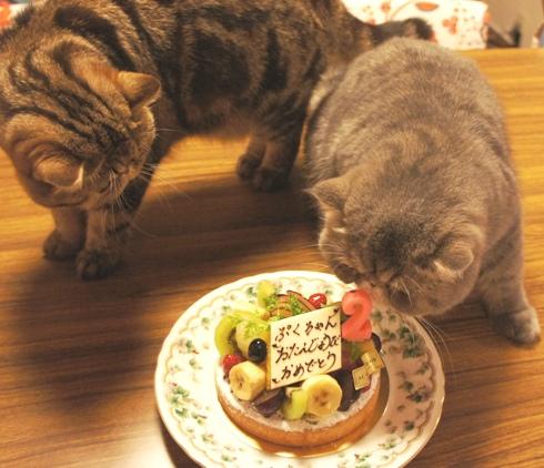 18)食べるでちよ