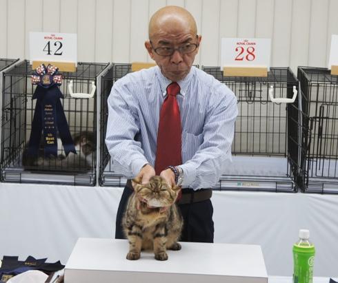 9.6)前田ジャッジファイナル