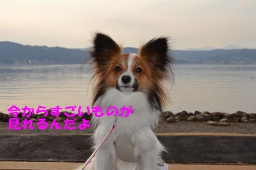 20_20120321205619.jpg