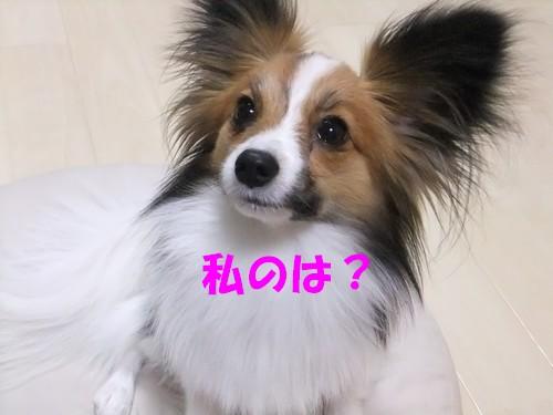 3_20120307212535.jpg