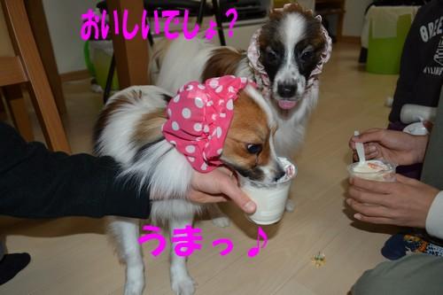 6_20120330194659.jpg