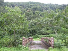 初恋公園4