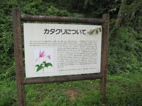 初恋公園9