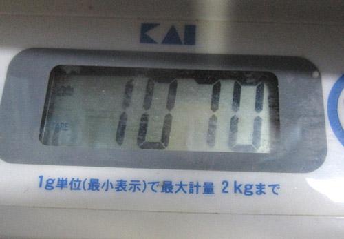 kiki6.jpg