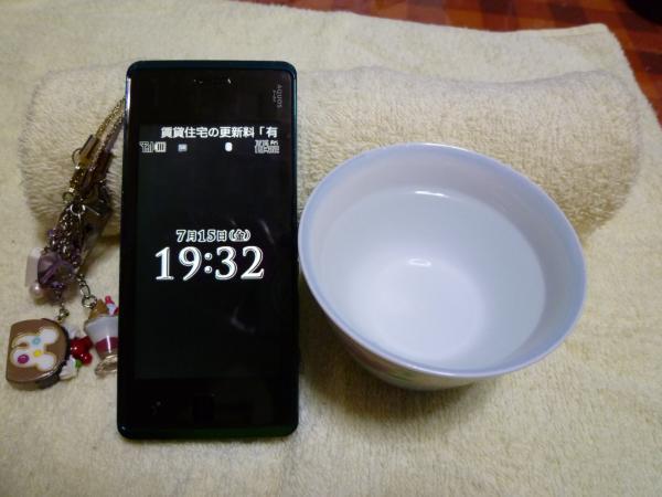 P1020413.jpg