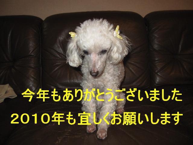 IMG_3100.jpg