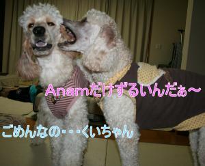 2010+10+025_convert_20101018093713.jpg