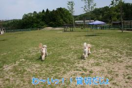 繝峨ャ繧ッ繝ゥ繝ウ+011_convert_20100511205036