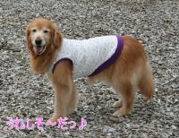 縺・←繧薙