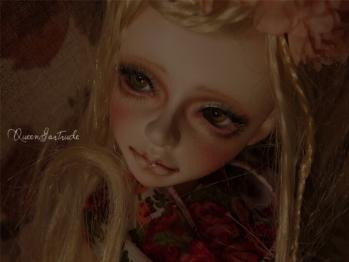 23_20110329183522.jpg