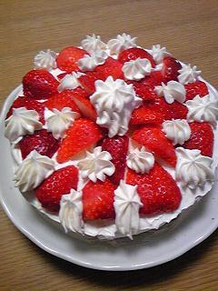 クリスマスケーキ2009_1