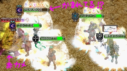 kameKari_0001n.jpg
