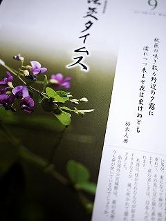 P1030119.jpg