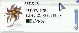 2011y08m04d_223425046.jpg