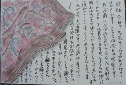 CIMG6353スカーフ
