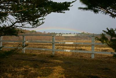 rainbow120324_01.jpg