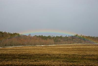 rainbow120324_03.jpg
