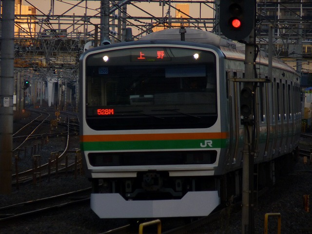 P1100561.jpg