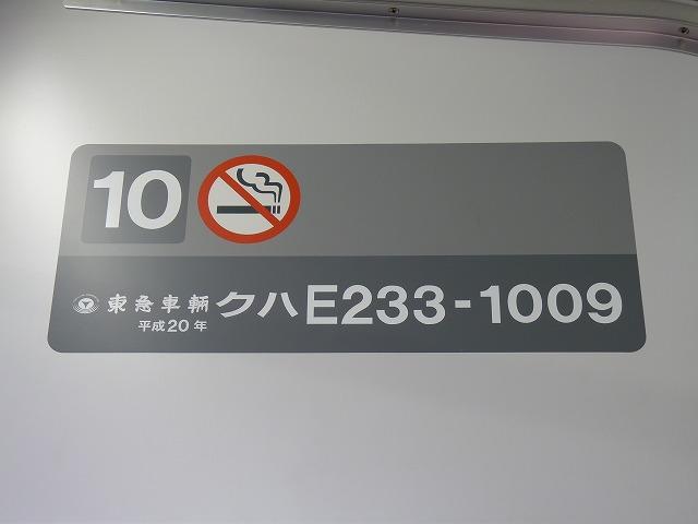 P1110172.jpg