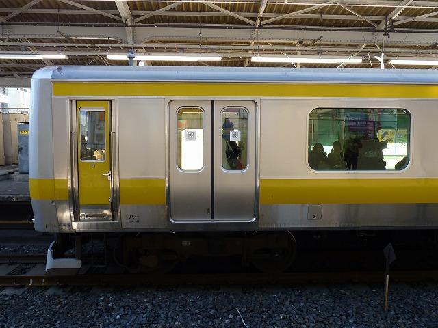 P1110273.jpg